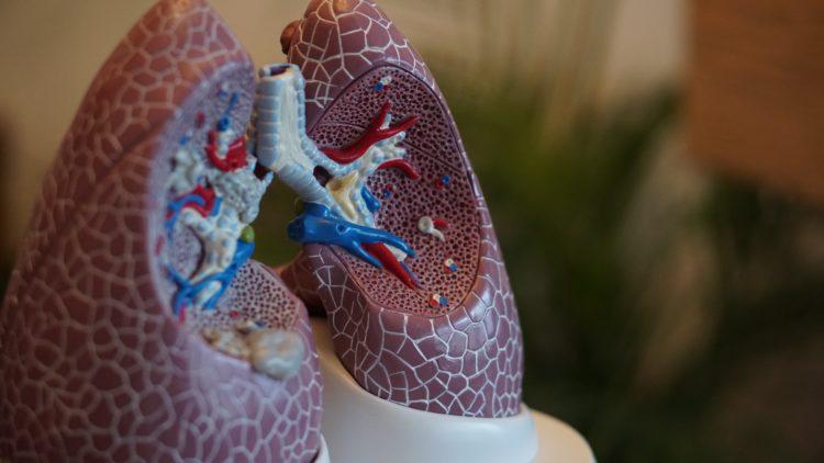 PERCHÈ SMETTERE DI FUMARE: BENEFICI E VANTAGGI